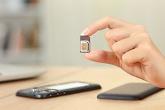 Woman hand holding sim card different sizes Stock Photography