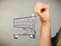 Woman hand holding small tiny shopping cart Stock Image