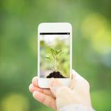 Woman hand holding smart phone Stock Photo