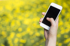 Woman hand holding smartphone Royalty Free Stock Photos