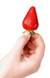 Woman hand holding strawberry on the white background Royalty Free Stock Images