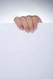 Woman Hand Holding White Blank Paper Stock Images