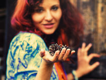 Woman hand holds a fir-cone on wood background, Ecology concept Stock Photos