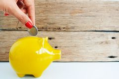 Woman hand inserting coin in a yellow piggy bank, savings for future concept Royalty Free Stock Photos