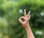 Woman hand with OK sign on green blur. Background Royalty Free Stock Image