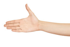 Woman hand (palm) isolated Stock Photo