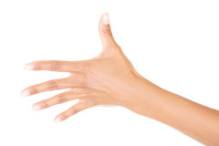 Woman hand (palm) Royalty Free Stock Photos