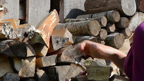 Woman hand pick up collect dry chopped firewood stock footage