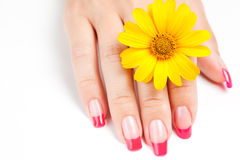 Woman hand with pink manicure Stock Photos
