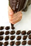 WOMAN HAND PREPARING CHOCOLATE TRUFFLES AGAINTS WHITE BACKGROUND royalty free stock photo