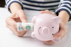 Woman hand pulling banknote money from pink piggy bank using as bad habit in savings and investment concept.  stock photos