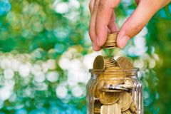 Woman hand put gold coin money in the glass jar on table in gard Royalty Free Stock Photography