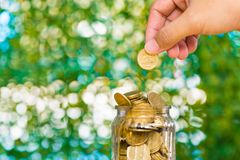 Woman hand put gold coin money in the glass jar on table in gard Stock Photos