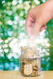 Woman hand put gold coin money in the glass jar on table in gard. En with green background, for saving for the future banking finance business concept Stock Photography