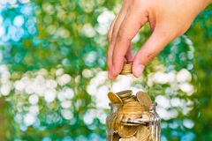 Woman hand put gold coin money in the glass jar on table in gard. En with green background, for saving for the future banking finance business concept Royalty Free Stock Photo