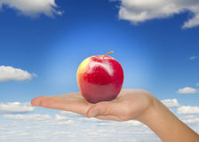 Woman hand with red apple Royalty Free Stock Photos