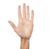 Woman hand showing five count stock photo