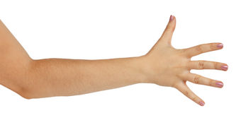 Woman hand showing the five fingers Stock Image