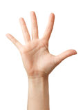 Woman hand showing the five fingers. isolated Royalty Free Stock Images