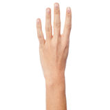 Woman hand showing number four Stock Photos