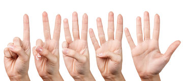 Woman hand shows with fingers from one to five Stock Image