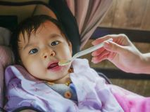 Woman hand with spoon feeding her daughter, a sweet and adorable beautiful Asian Chinese baby girl 7 or 8 months old sitting at. Infant chair having her meal in royalty free stock photo