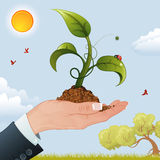 Woman Hand with the Sprout. Business Woman Hand with the Sprout from the Ground on Nature Background, vector illustration Royalty Free Stock Image