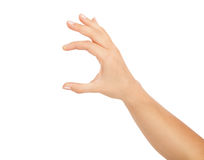 Woman hand on white backgrounds Stock Photos