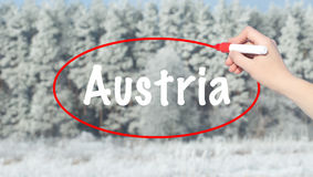 Woman Hand Writing Austria with a marker over winter forest. Royalty Free Stock Photo