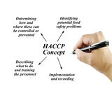 Woman hand writing HACCP concept on white background for use in Royalty Free Stock Photography