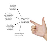 Woman hand writing HACCP concept on white background for use in Stock Photography