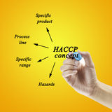 Woman hand writing HACCP concept on yellow background for use in manufacturing Royalty Free Stock Photography