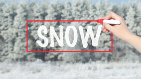 Woman Hand Writing Snow with marker over snowy forest. Royalty Free Stock Photography