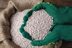 Woman with handful of fertilizer over bag, top view. Horticulture and gardening. Woman with handful of fertilizer over bag on wooden table, top view stock photo