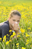 Woman with handkerchief on a meadow. Young woman with handkerchief on a meadow royalty free stock photos