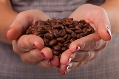Woman hands and beans. Stock Image