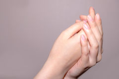 woman hands Stock Image