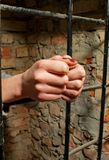 Woman hands behind the bars Royalty Free Stock Photo