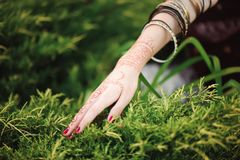 Woman Hands with black mehndi tattoo. Hands of Indian bride girl with black henna tattoos. Fashion. India. Woman Hands with black mehndi tattoo. Hands of Indian stock photo