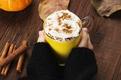 Woman hands in black sweater holding a cup of pumpkin latte with. Spices cinnamon, an anise and whipped cream on a wooden background Royalty Free Stock Photography