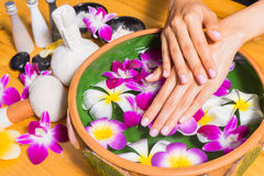 Woman hands with a bowl of aroma spa water on wooden table. Spa relaxation.Spa treatment.hands Spa.massage and spa salon.Thai spa.Beautiful hand .perfect nail royalty free stock photos