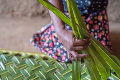 Woman hands braiding green coconut leaves Royalty Free Stock Photos