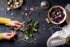 Woman hands cooking salad, fresh basil, radicchio leaves and eggs. Wooden table, directly above. Stock Photo