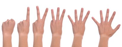 Woman hands counting Royalty Free Stock Image