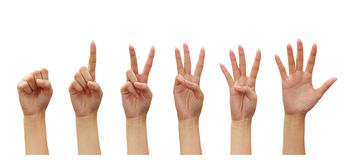 Woman hands Counting  (numbers zero to five) Royalty Free Stock Photography