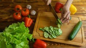 Woman hands cuttind cucunber on salad, 4k timelapse video stock video footage