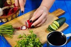 Woman hands cutting fresh crunchy radish on cutting board with c. Healthy food, vegetarian, home cooking, vegetable slices. Woman hands cutting fresh crunchy Royalty Free Stock Images