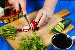Woman hands cutting fresh crunchy radish on cutting board with. Healthy food, vegetarian, home cooking, vegetable slices. Woman hands cutting fresh crunchy Royalty Free Stock Photo