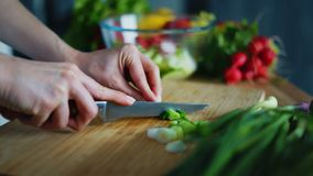 Woman hands cutting green onion for salad. Close up fresh vegetables. Cooking ingredients on kitchen table. Housewife preparing healthy breakfast at home stock video footage