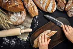 Woman hands cutting a loaf of bread on rustic wooden board, with wheat ears and knife, top view. Still Life. Flat lay Stock Image